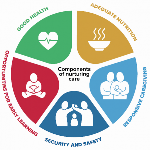 The 5 components of Nurturing Care